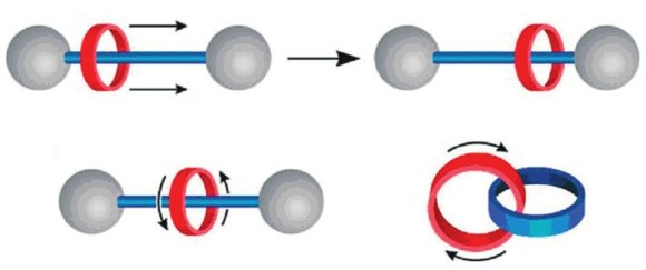 Механические движения составных частей ротаксана и катенана [5]