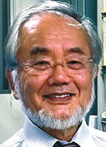 Ёсинори Осуми