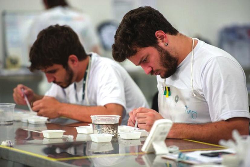 Лаборанты Oxitec сортируют личинок комаров, отделяя самцов от самок (www.sciencemag.org)