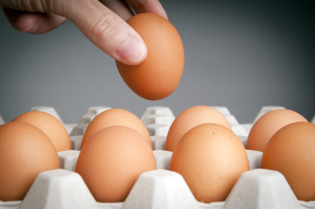 How Much Protein Is in One Egg