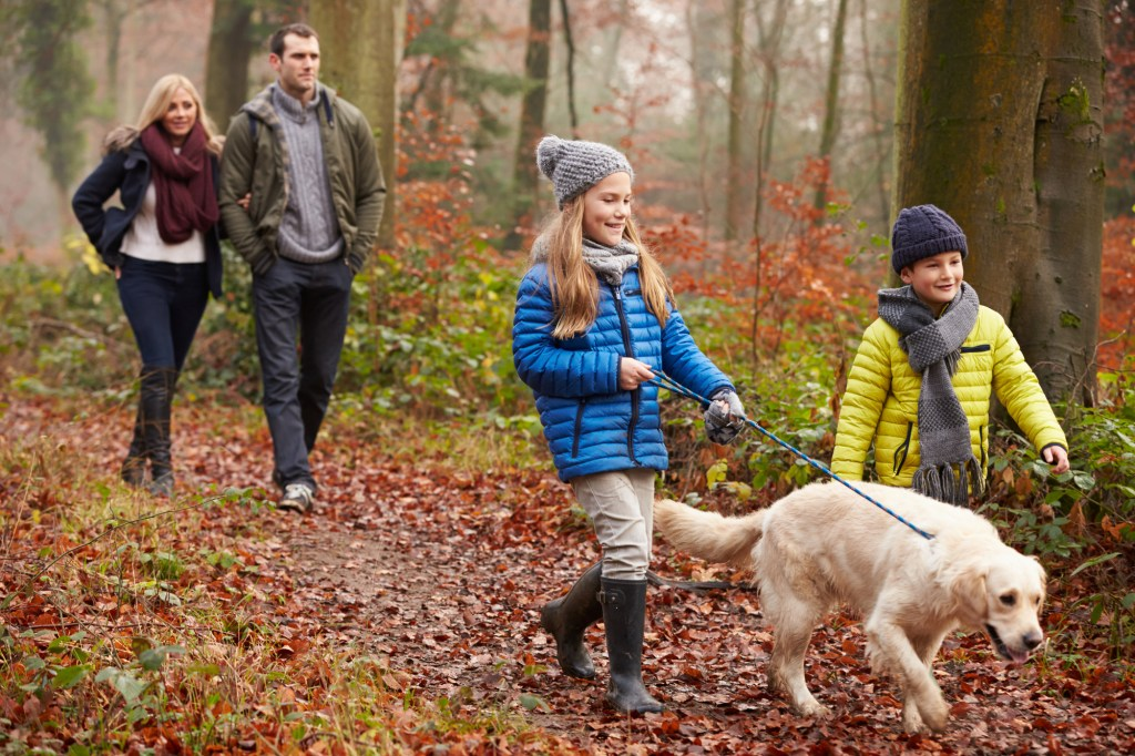 What Are The Benefits Of Walking After Dinner