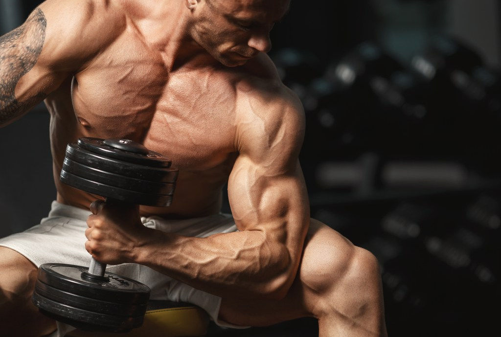 How To Build Your Arms From Scratch