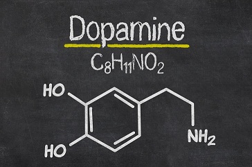 humans cheat dopamine