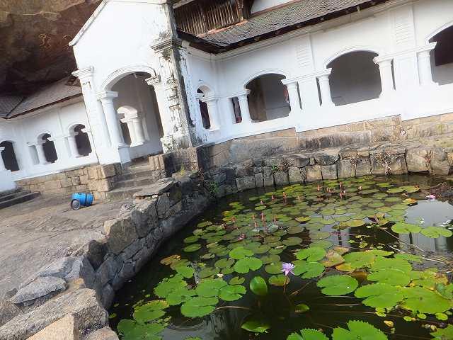 小さな池:ダンブッラ黄金寺院(石窟寺院):スリランカ