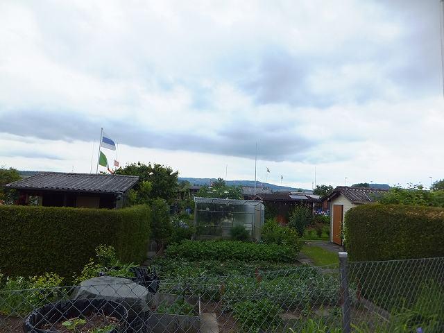 共同農園:スイス