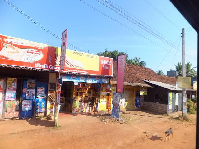 バスからの車窓(ネゴンボ~グルネーガラ):スリランカ