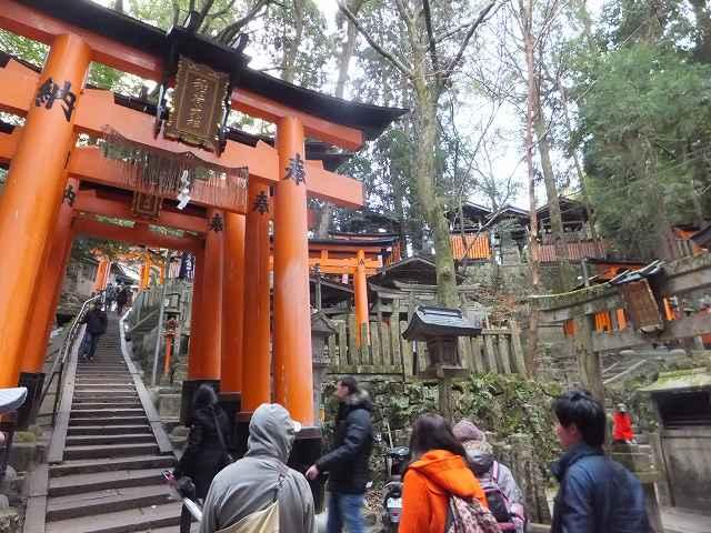 上へと続く階段と大量の鳥居:伏見稲荷大社
