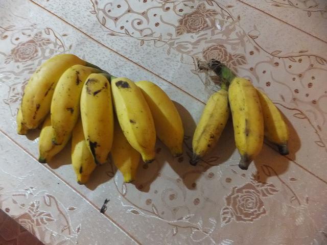 ダンブッラで買ったかわいいバナナ:スリランカ