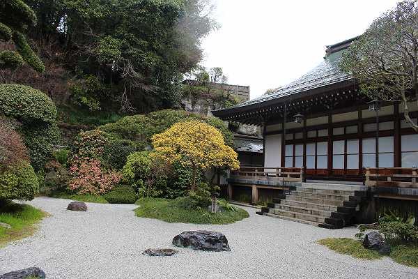 報国寺(鎌倉)の裏側と庭の様子です