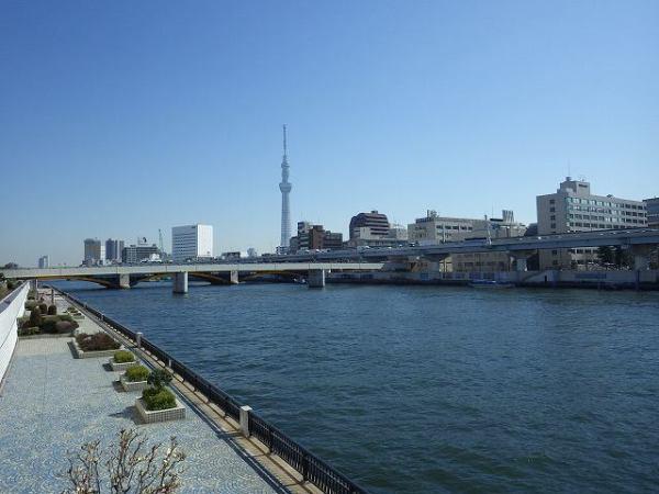 東京スカイツリーを見ながら隅田川沿いを散歩