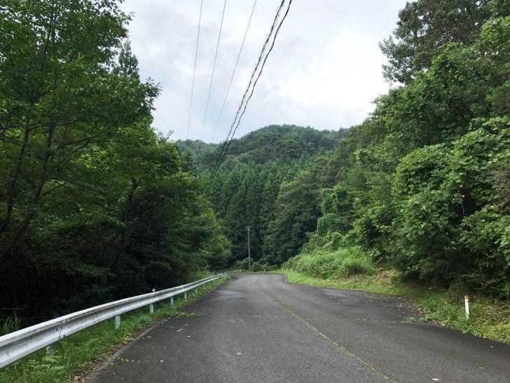 田束山さんを登る車道:歌津方面から