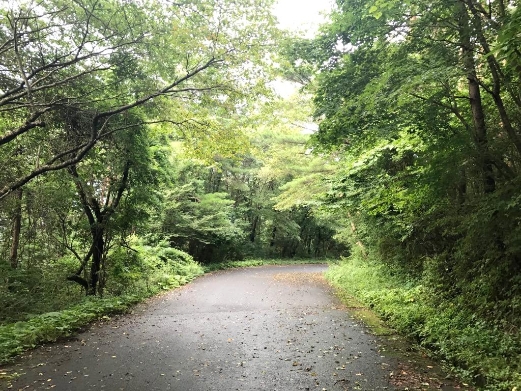 田束山帰り道:気仙沼方面