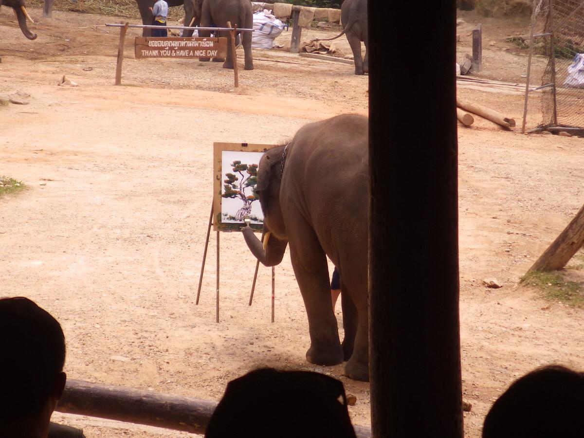 絵を描く象:メーサーエレファントキャンプ