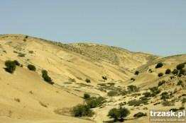 Okolice Fezu