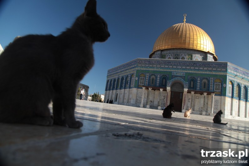 Dome of the Rock, Temple Mount, Jerusalem, Palestine