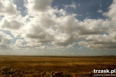 """Serengeti w języku Masajów """"Niekończąca się przestrzeń"""""""