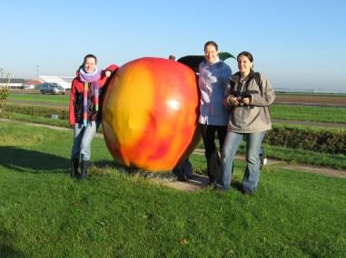 The big apple...