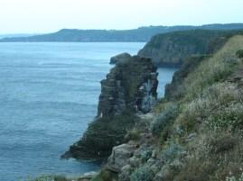 Madár szikla