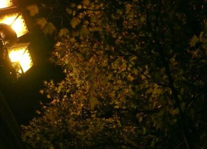 Őszi este