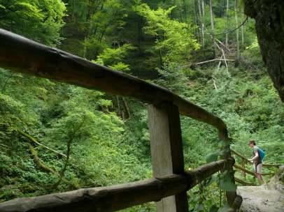 Az út a folyó mellett