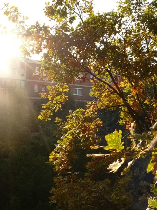 Itt van az ősz itt van...