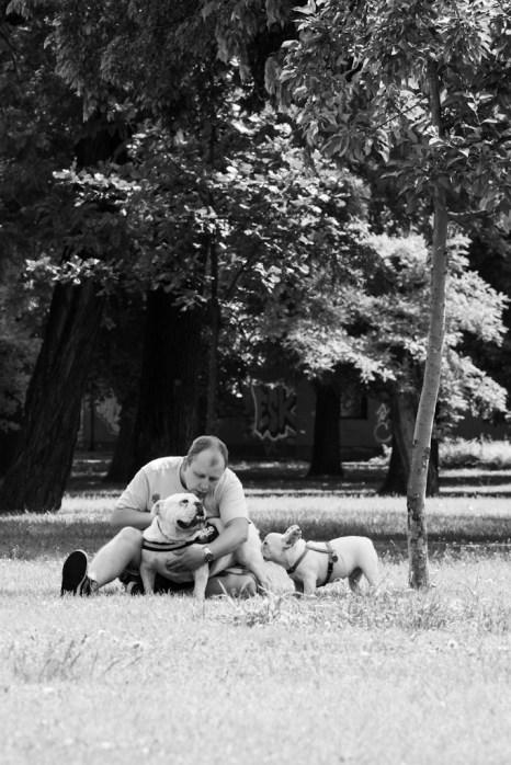 bulldog piknik-0842