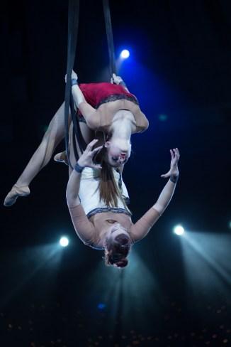 cirkusz-4263