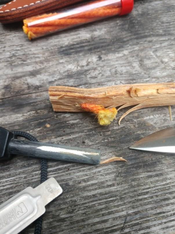 Baddest Bee Fire Fuse Field Test