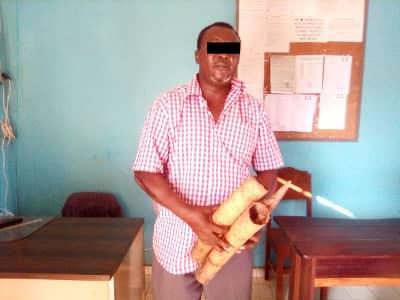 TRAFIC D'IVOIRE/Un vieux suspect pris en flagrant délit à Makokou