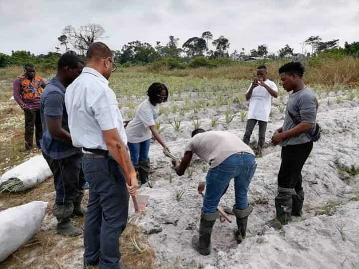 Village Graine de Bolokoboué: une éclosion agricole au Gabon