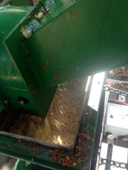 Pulverized apples.