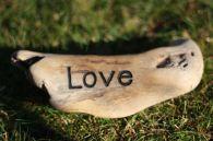 Driftwood, Love