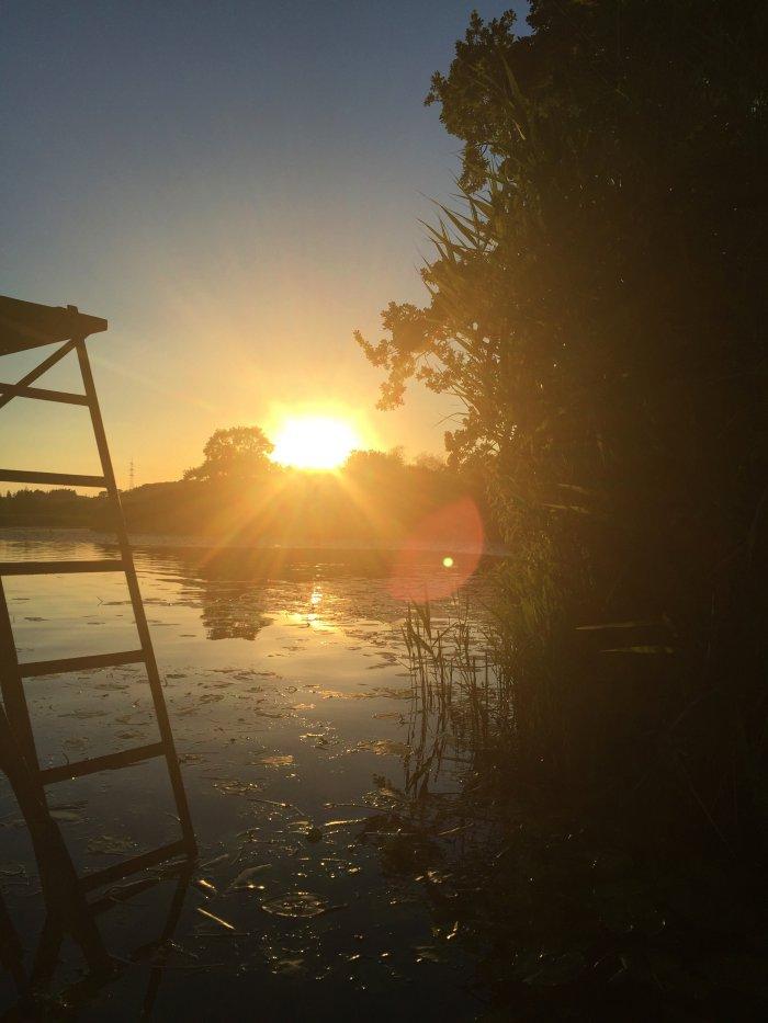Maisinger See im Sommer