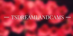 TS Dreamland Cams