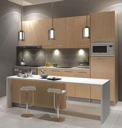 kitchen cabinet design picture photo kitchen cabinet