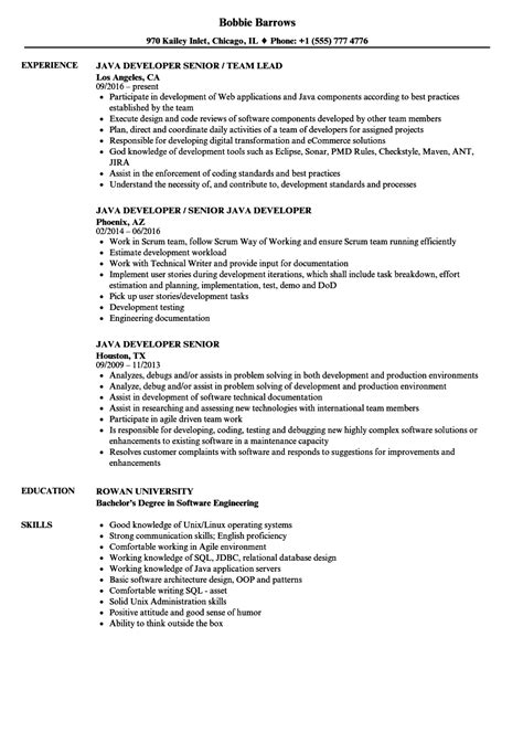 java developer senior resume sles velvet jobs