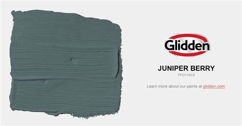 juniper berry paint color glidden paint colors