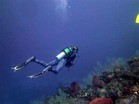 mandy eel shore dive roatan warfighter scuba