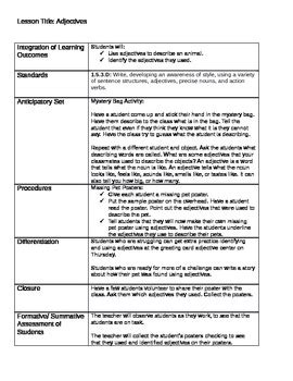 missing pet poster adjectives lesson plan handout jennifer