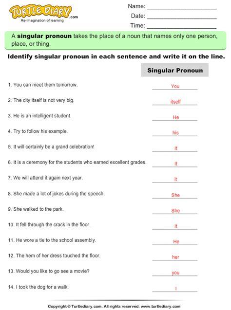 identify singular pronouns write line worksheet turtle diary