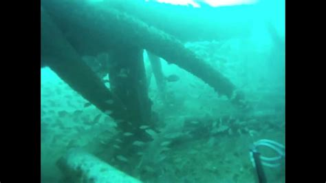 stage dive panama city beach offshore scuba diving