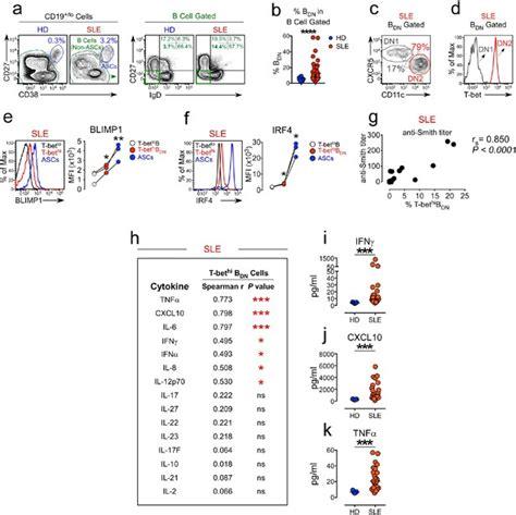 ifnγ induces epigenetic programming human bethi cells promotes