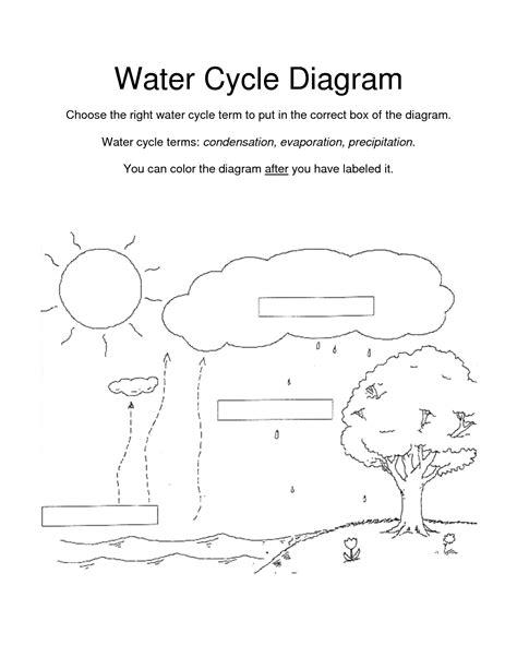 worksheet water cycle diagram worksheet grass fedjp worksheet