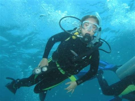 scuba diving lessons florida keys dive duck key
