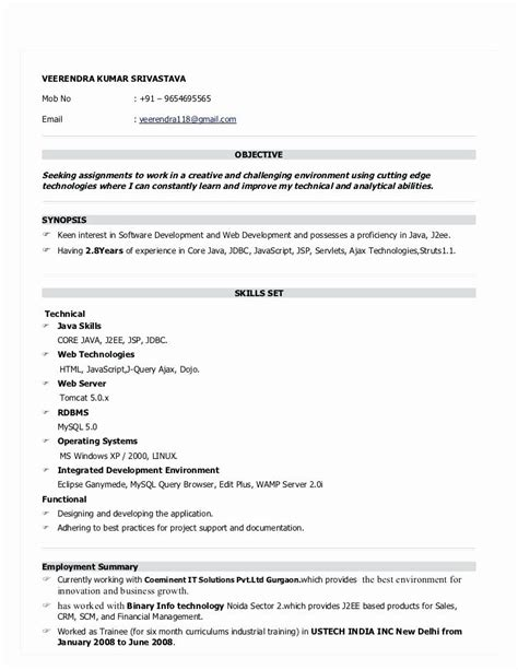 6 months experience java resume format resume format