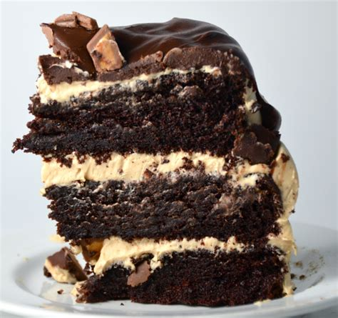delicious chocolate cake recipes 2015
