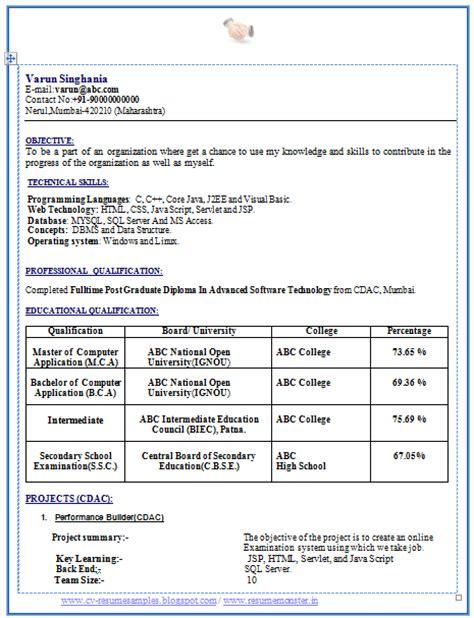 professional curriculum vitae resume template sle template latest