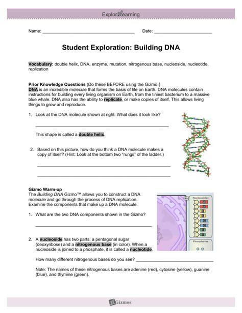 student exploration sheet growing plants