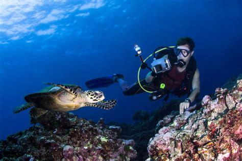 thailand scuba diving sites dive world thailand
