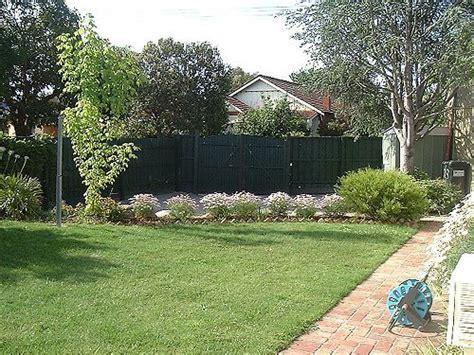 backyard background leaf seed